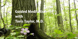 Tavis Taylor, M.D. - Guided Meditation