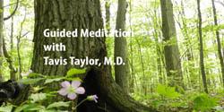 Tavis Taylor, M.D. - Guided Meditation